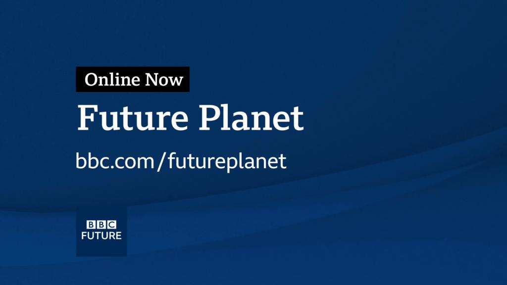 BBC_Future_Planet_033-Custom-1